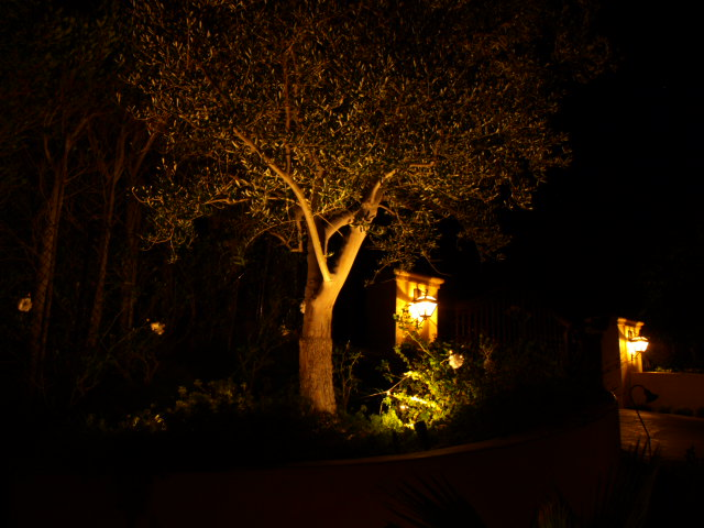 Outdoor Lighting Dos Vientos Landscape Lighting
